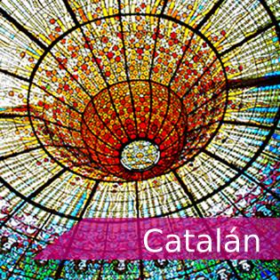 """<p class=""""p1""""><span class=""""s1"""">Tarjeta con vínculo a información de exámenes y certificaciones de Catalán</span></p>"""